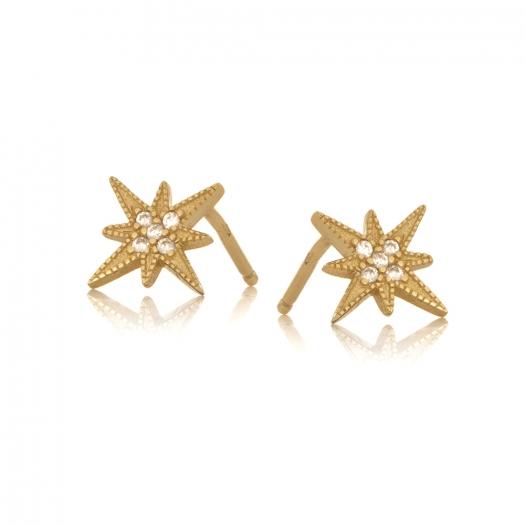 Kolczyki ASTRO srebrne pozłacane z gwiazdą